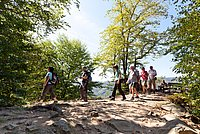 Hiking trails are becoming increasingly popular with tourists © Donau NÖ/Gerald Lechner